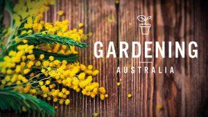 gardening australia g.au big