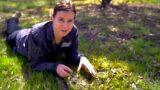 Gardening Australia 32-7